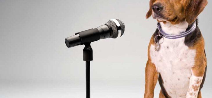 Om hundar kunde tala